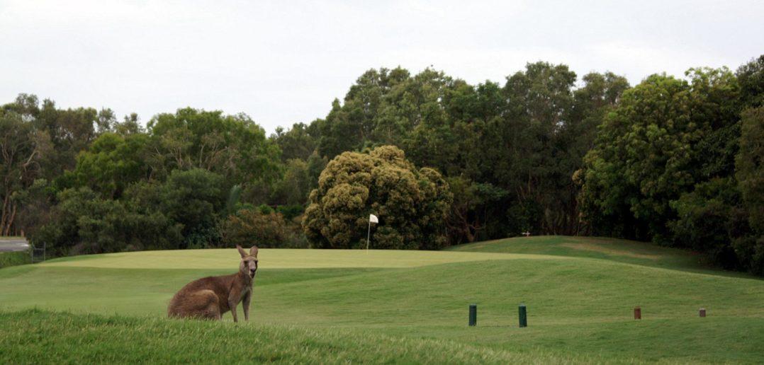 Hyatt Regency Coolum Golfplatz
