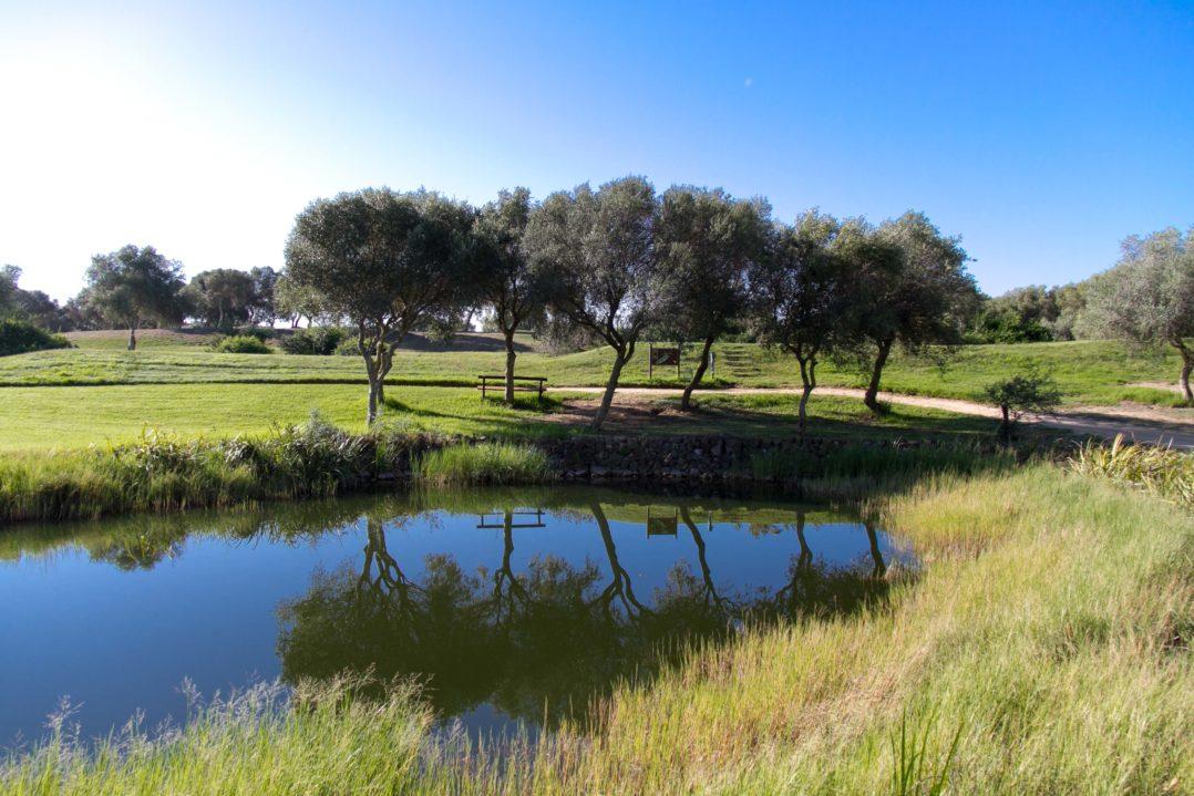 Kleiner Teich des Benalupe Golfplatzes