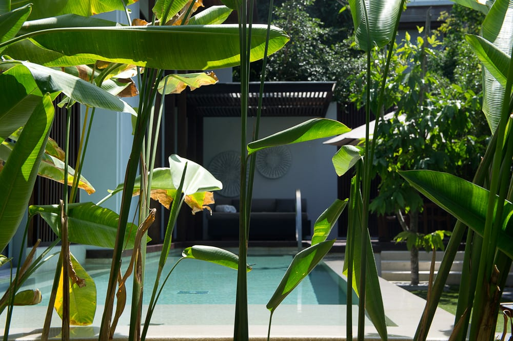 W Retreat hotel's private pool is a perfect place to relax