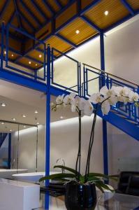 Hotel-Widder-Duplex-Gallerie