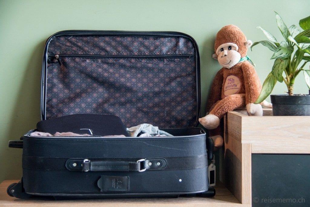 Affe bewacht Koffer