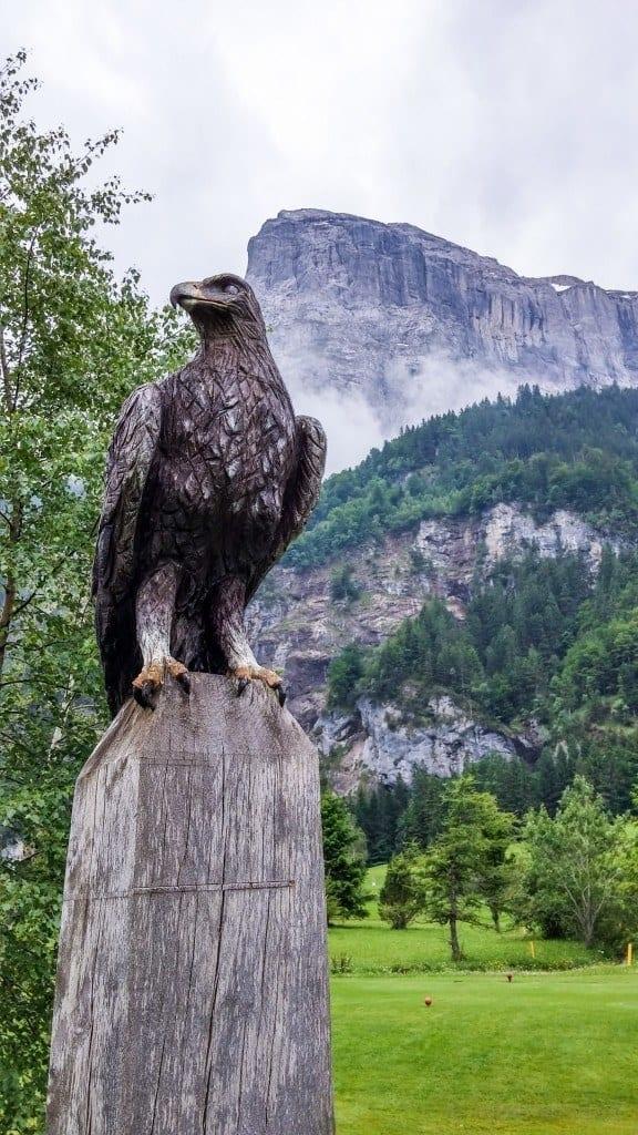 Adler am Eagle Hole