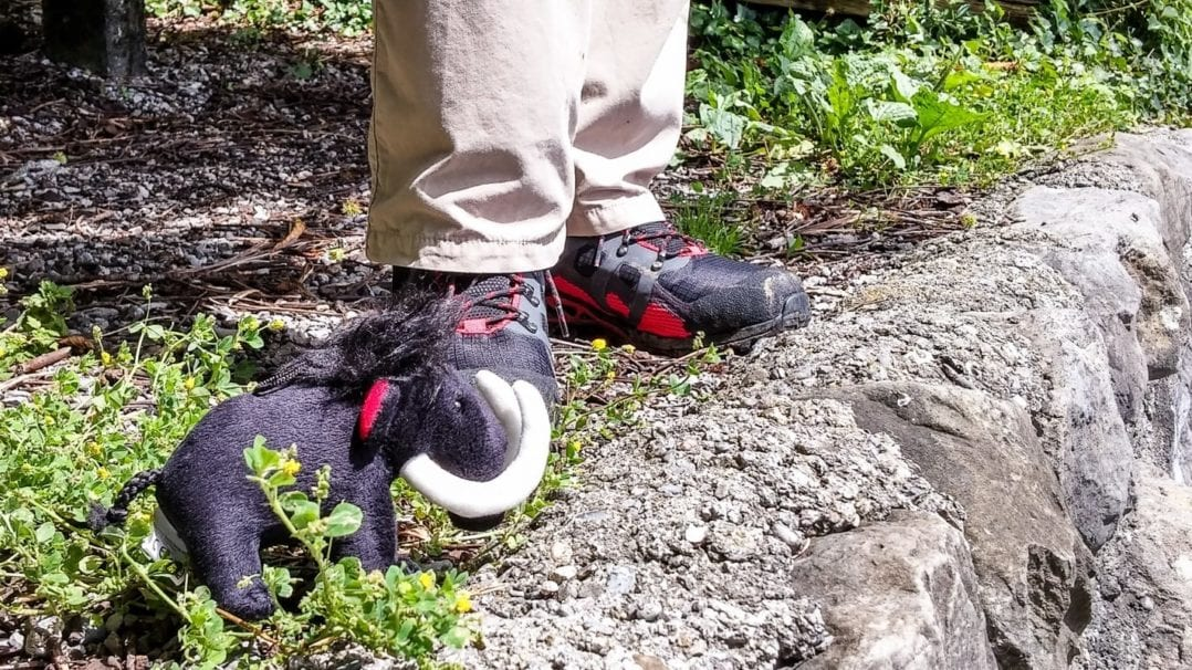 Mammut mascot with hiking shoes