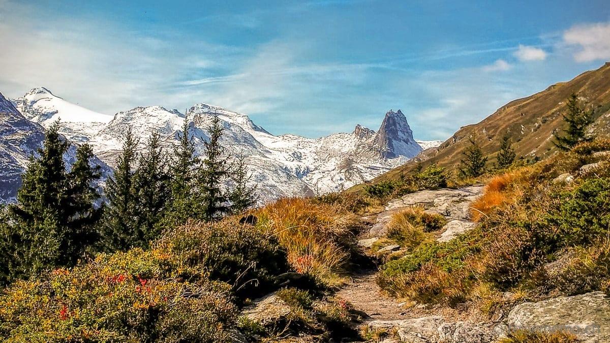 Herbstwanderung mit Aussicht auf das Zervreilahorn