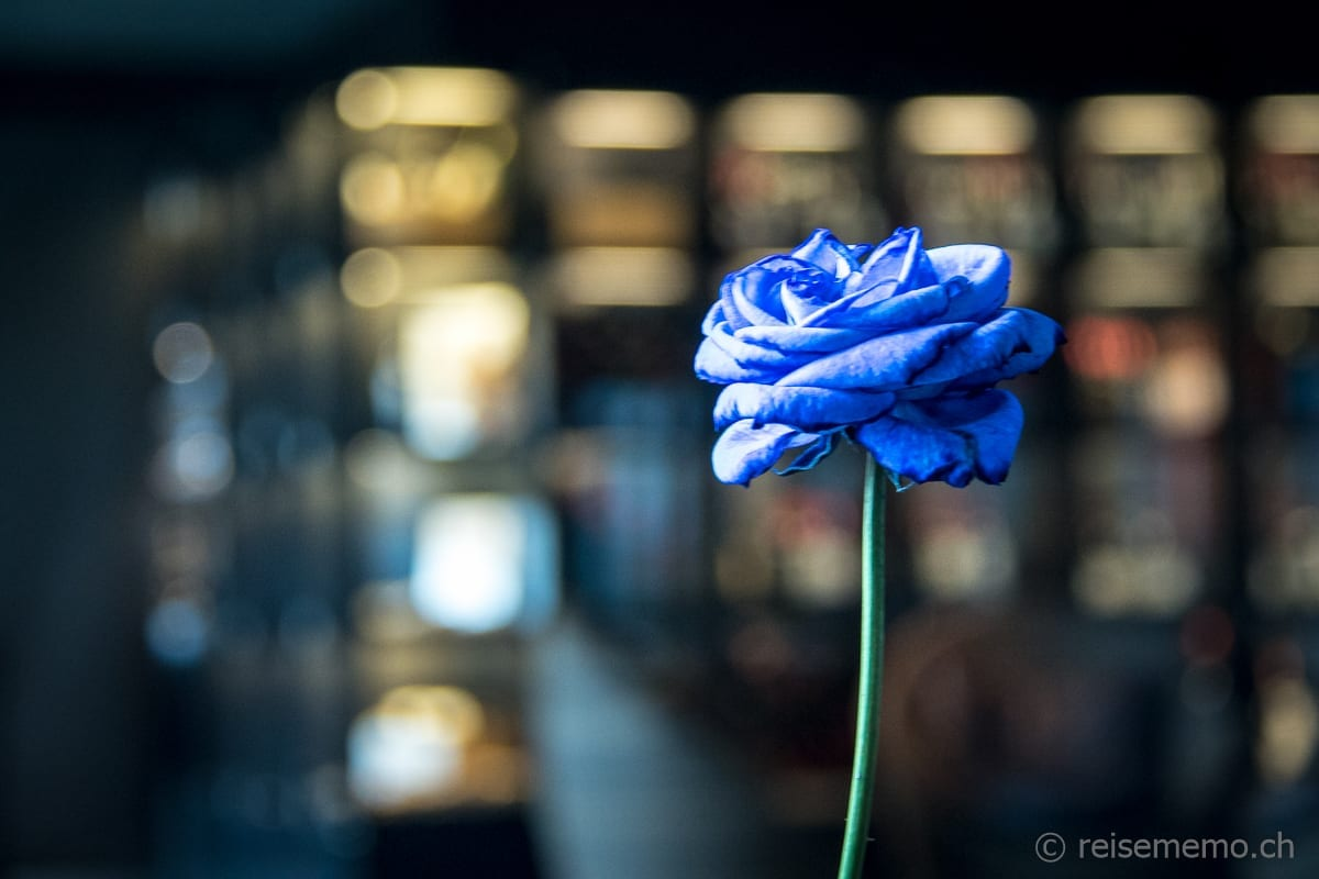 Restaurant PUR Blumendekoration