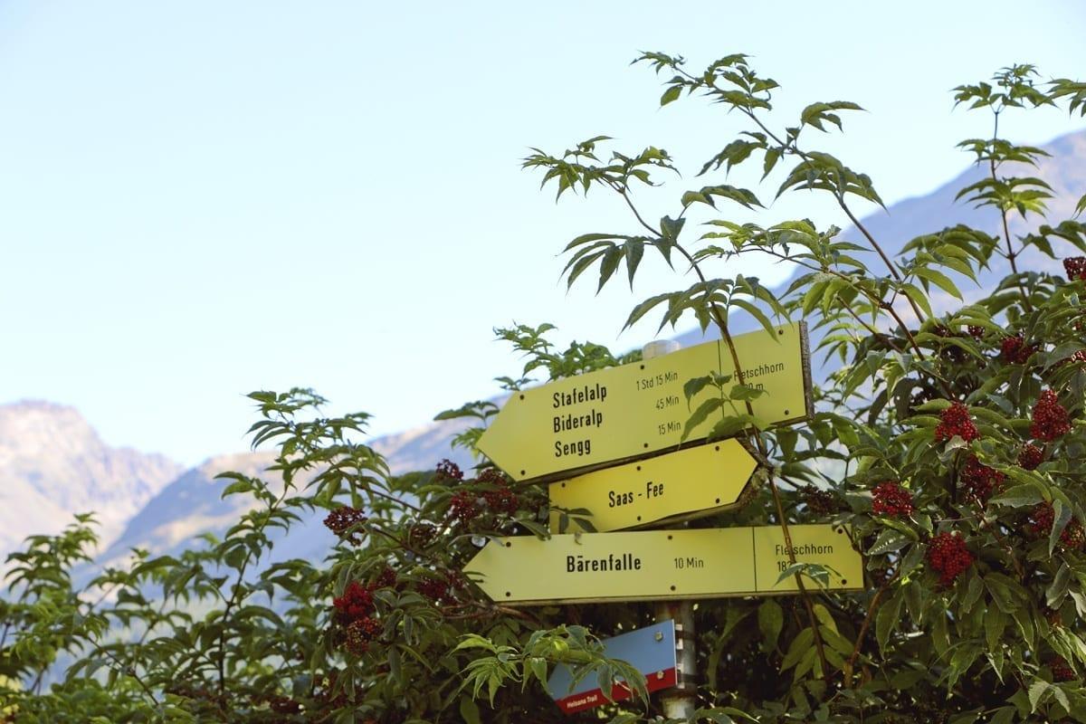 Wegweiser Wanderweg Waldhotel Fletschhorn Saas Fee