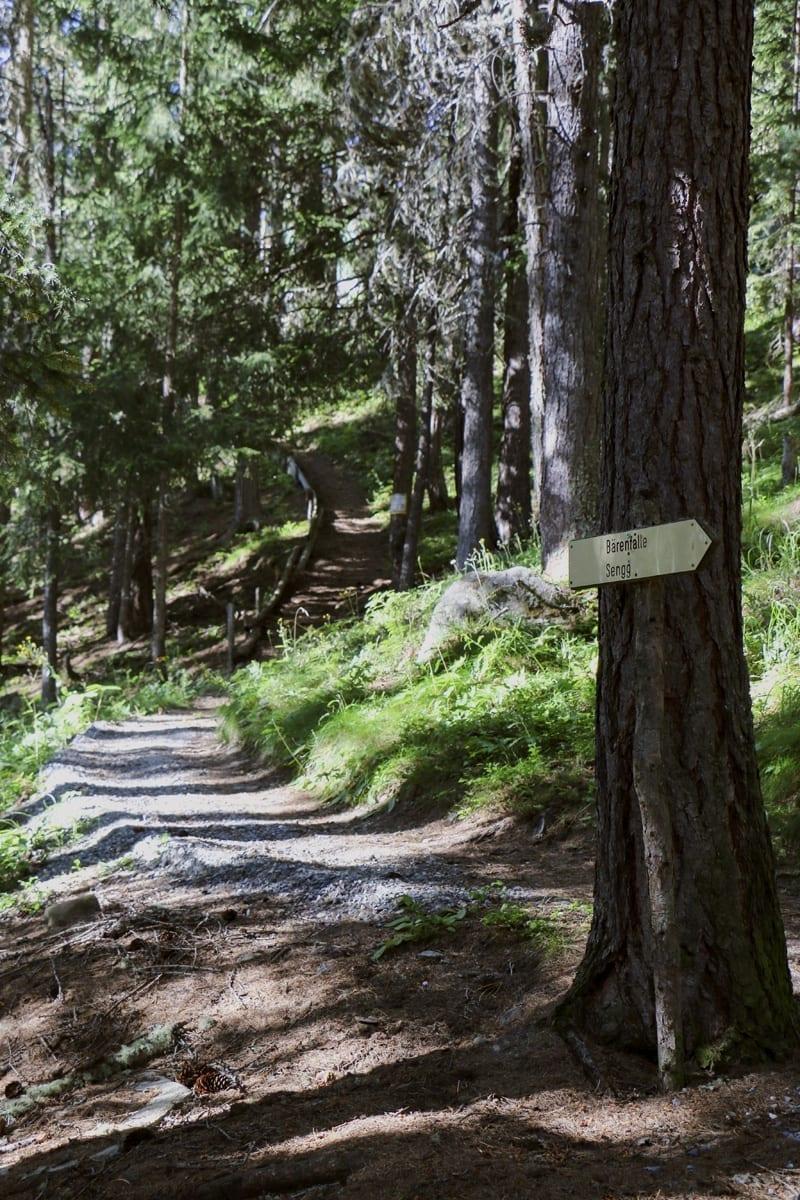 Waldspaziergang Saas Fee, Bärenfalle, Waldhotel Fletschhorn