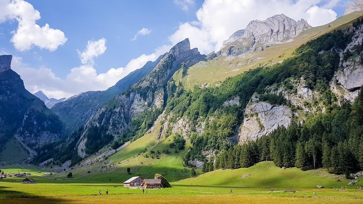 Alpine cheesemaking
