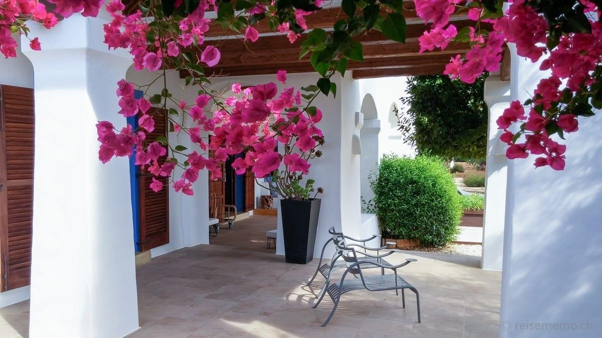 Garten mit Bougaevilla