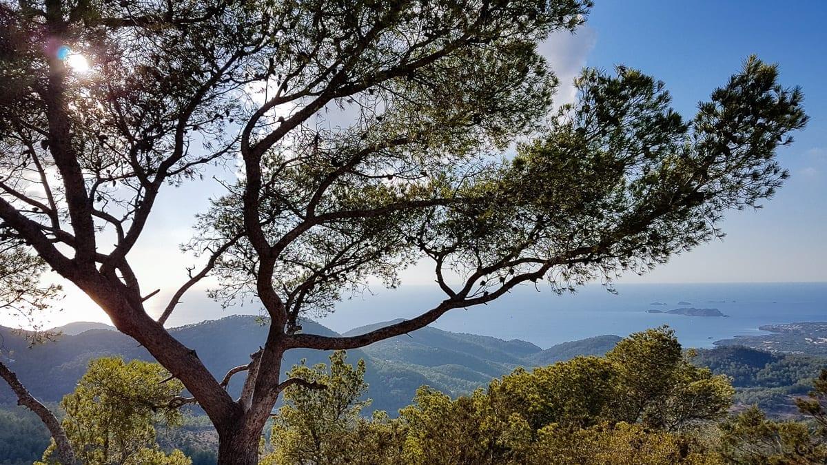 Aussicht vom Sa Talaia, dem höchsten Berg von Ibiza