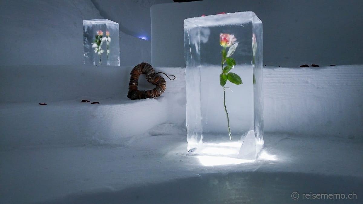 Rose in der Romantik-Suite im Iglu-Dorf
