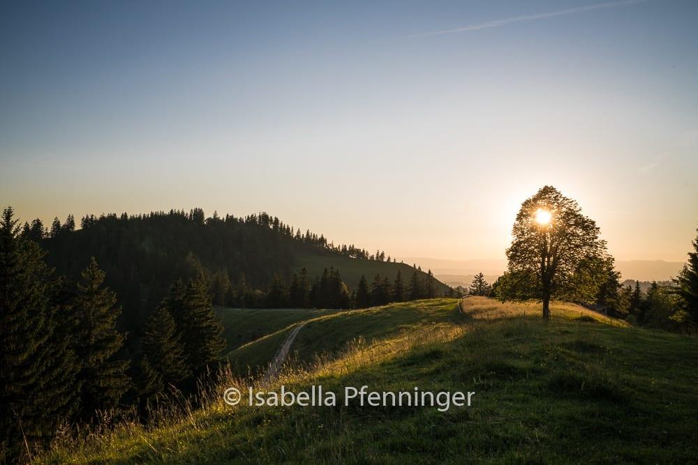 Sonnenuntergang Luushütte