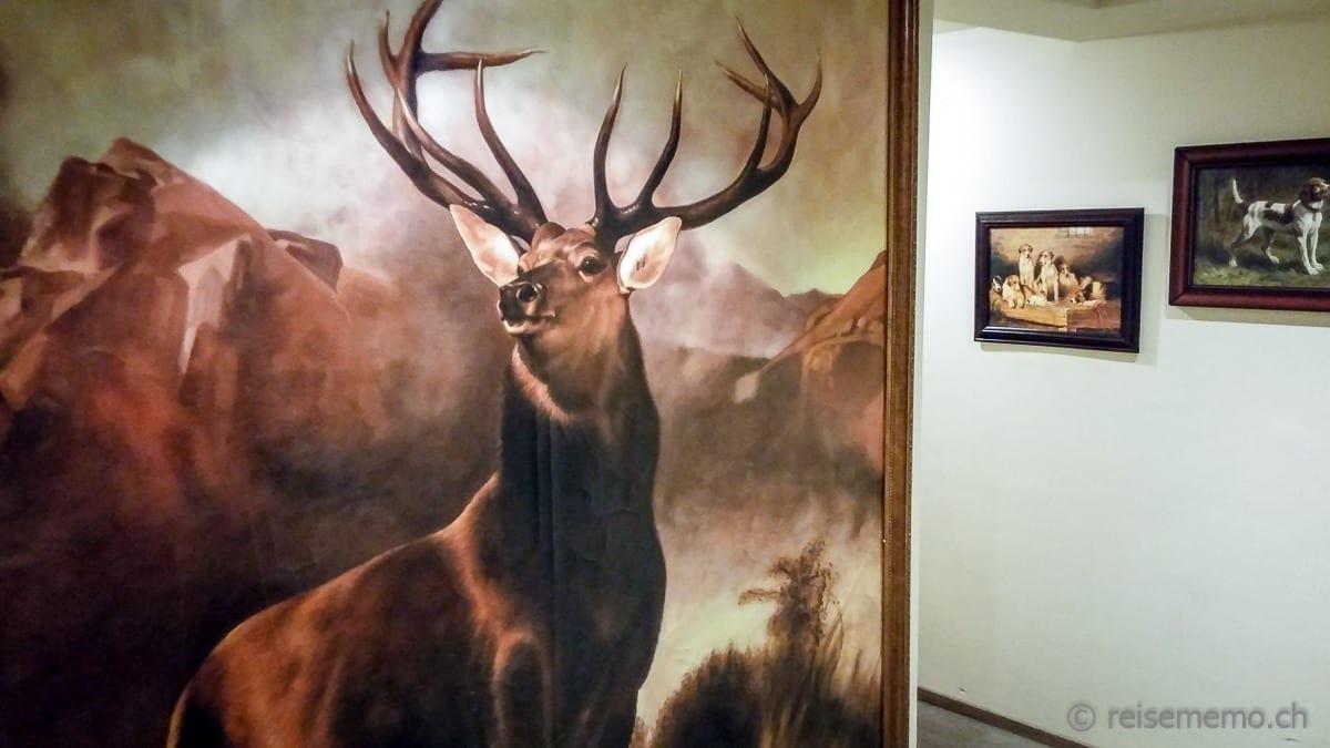 Bild mit Hirsch im Cervo Resort