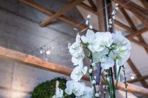 Dekorative Orchidee vor Dachgebälk
