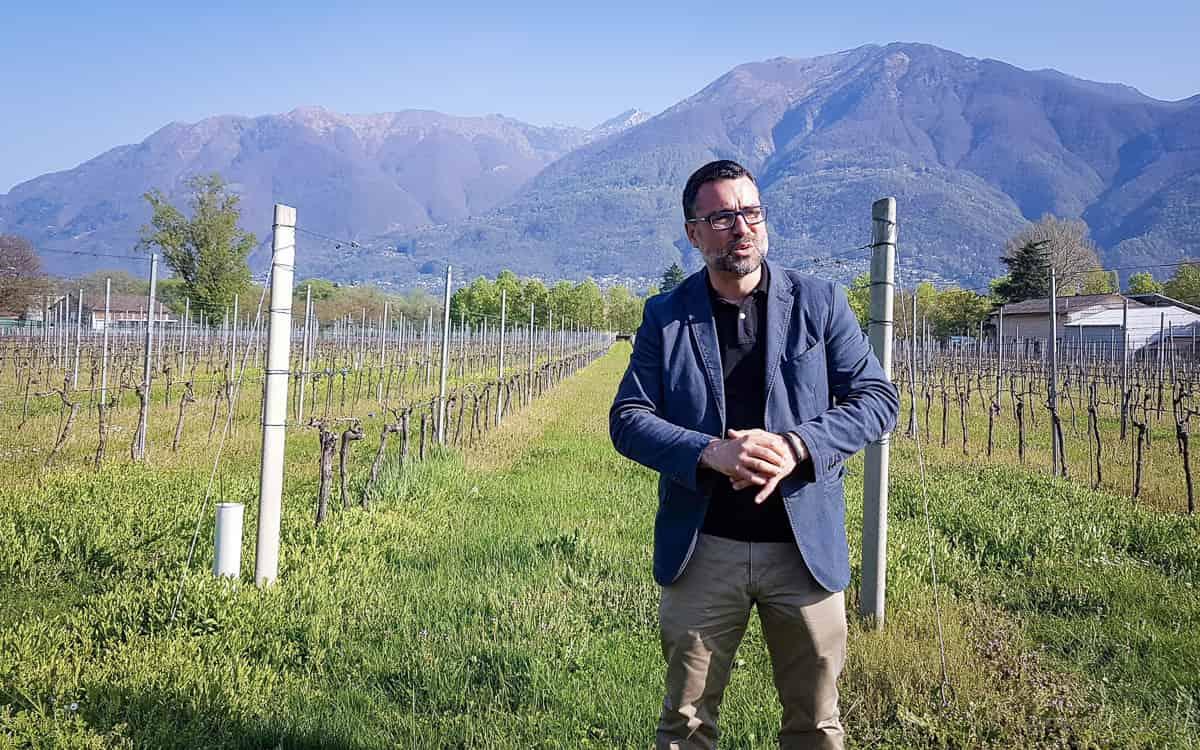 Agronom Fabio del Pietro erläutert den Weinanbau