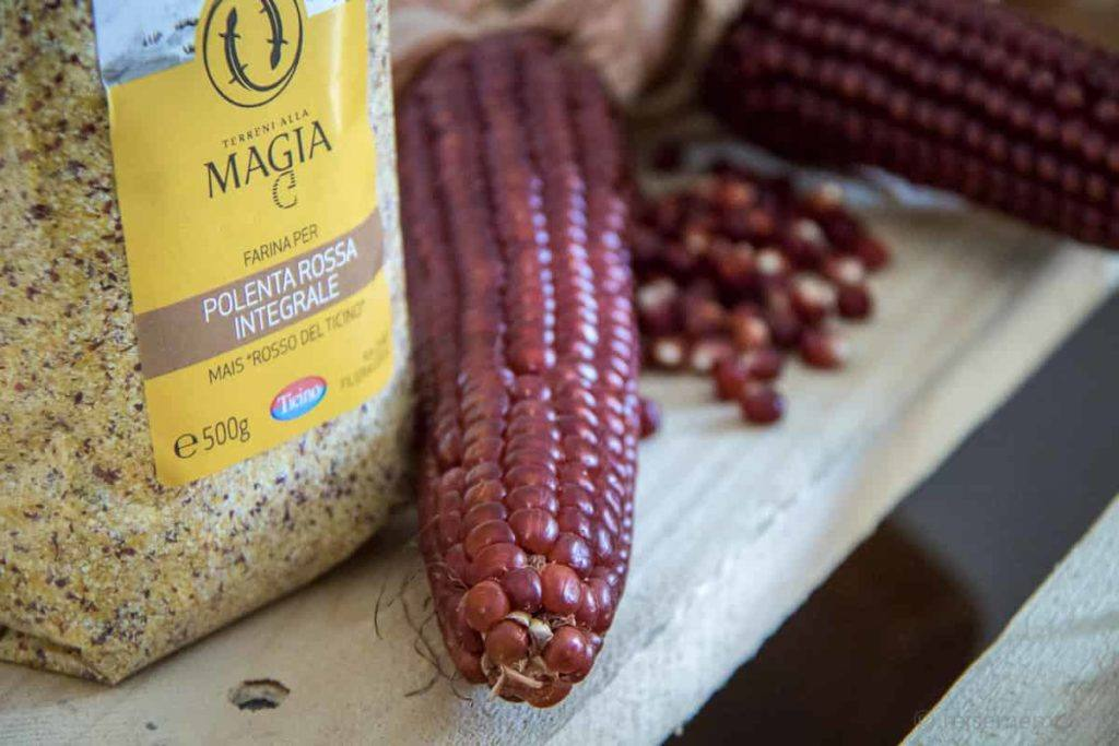 Mais und Polenta aus den Terreni alla Maggia