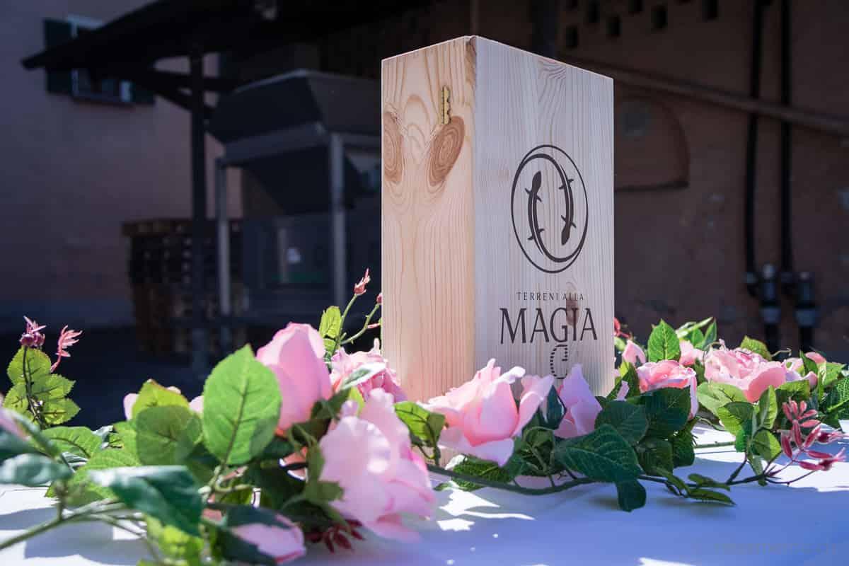 Weinkiste der Terreni alla Maggia