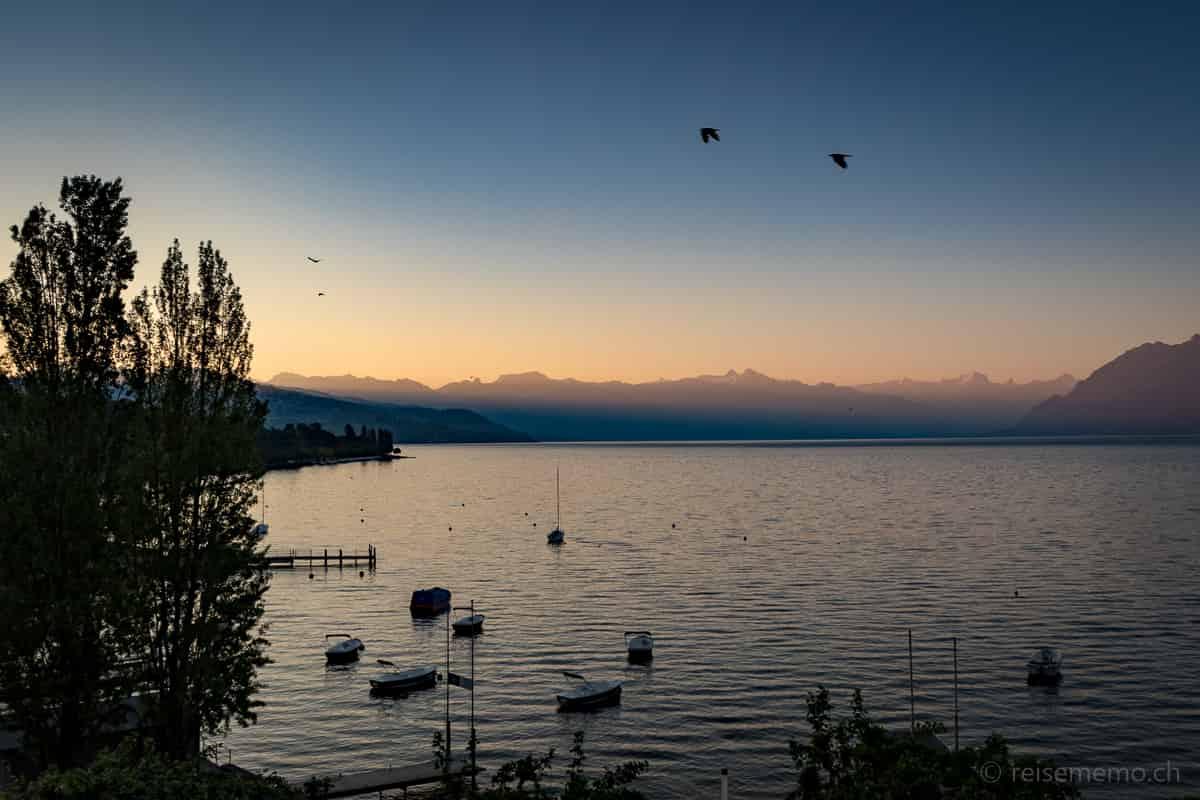 Morgendämmerung am Genfersee