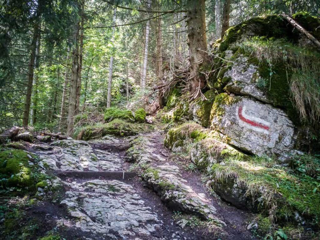 Steiniger Wanderweg zur Habergschwänd
