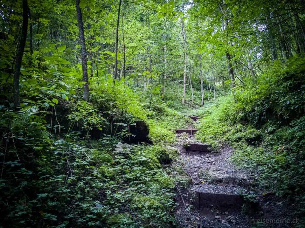 Wanderweg und Stufen zum Talalpsee