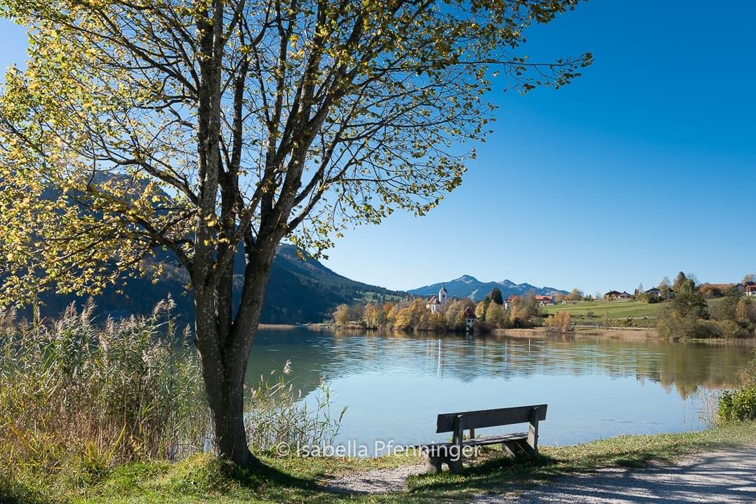 Ufer des Weissensee