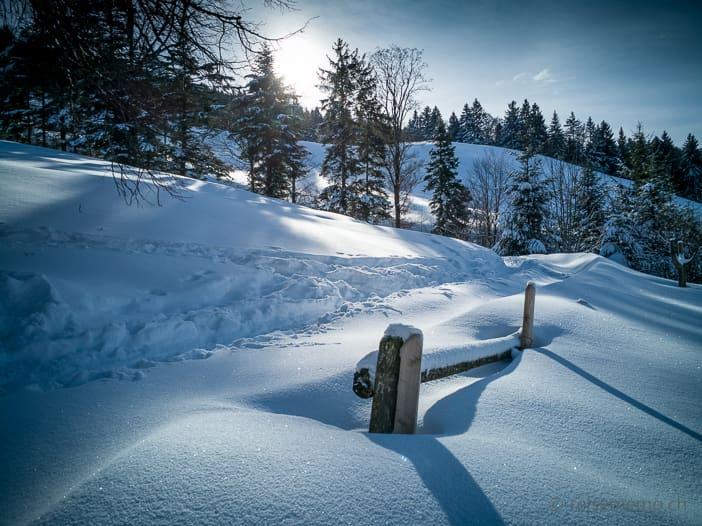 Verschneiter Zaun am Wegrand im Atzmännig