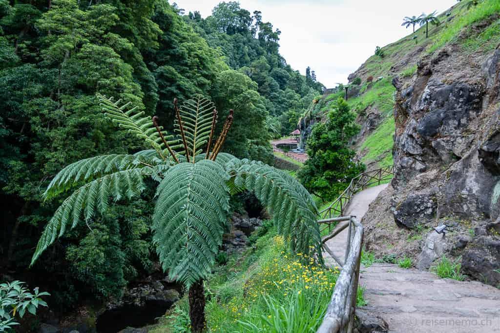 Parque natural de Ribeira dos Caldeirões