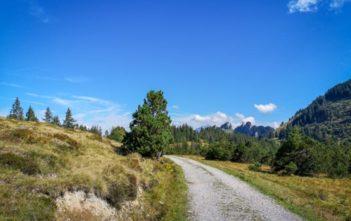 Hochmoor Amdener Höhenweg