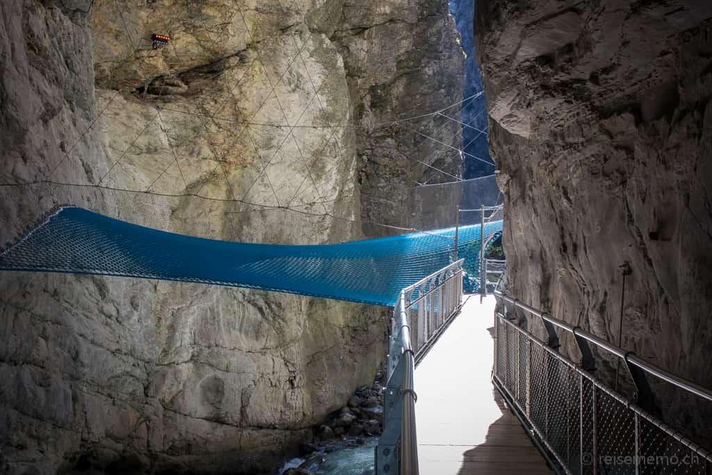 Spider Web Gletscherschlucht Grindelwald