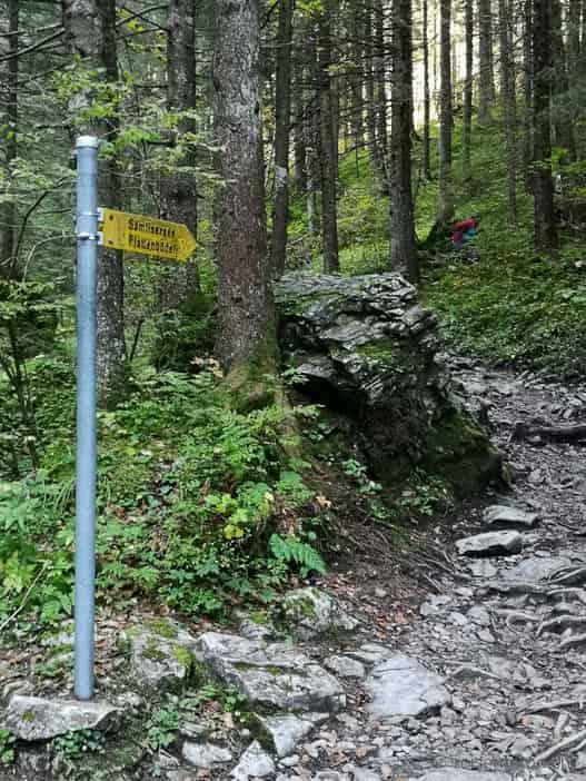 Bergweg zum Plattenbödeli