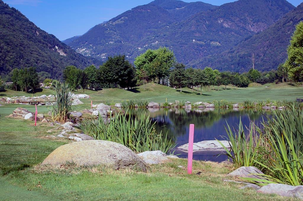 Golf Losone