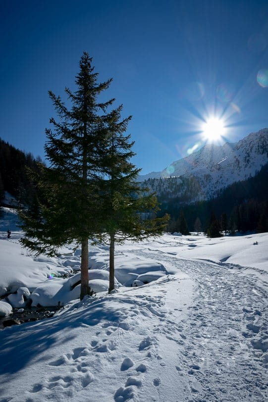 Winterwanderung nach Cleuson