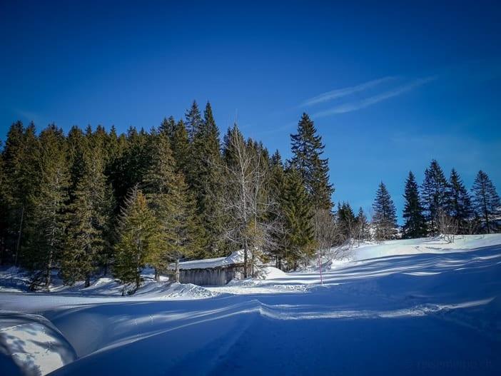 Winterwanderweg am Seeblisee im Hoch-Ybrig