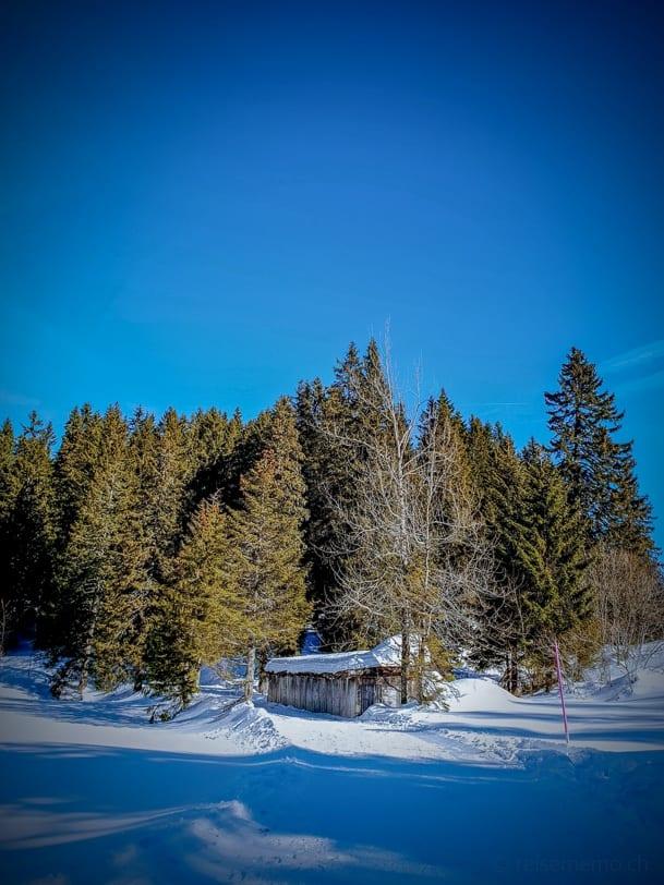 Winterwanderweg Seeblisee Hoch-Ybrig