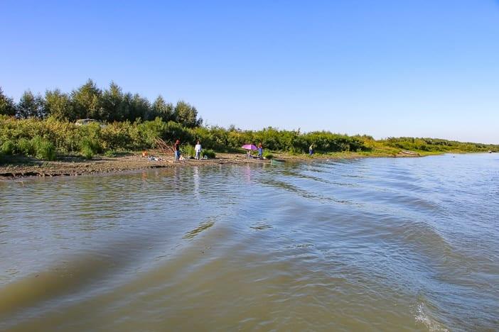 Fischer Donaudelta Rumänien