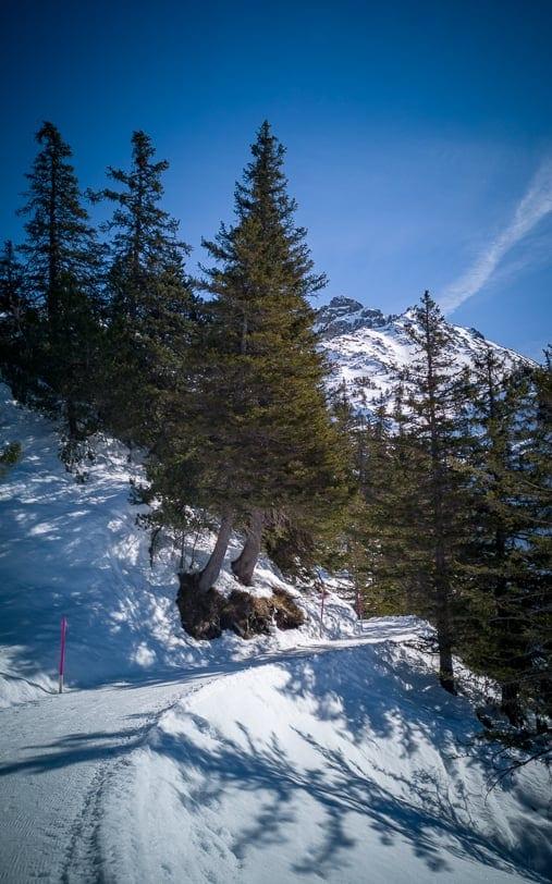 Winterwanderung von Malbun nach Sass und zurück