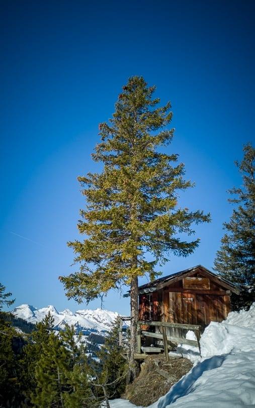 Winterwanderung von Malbun nach Sass