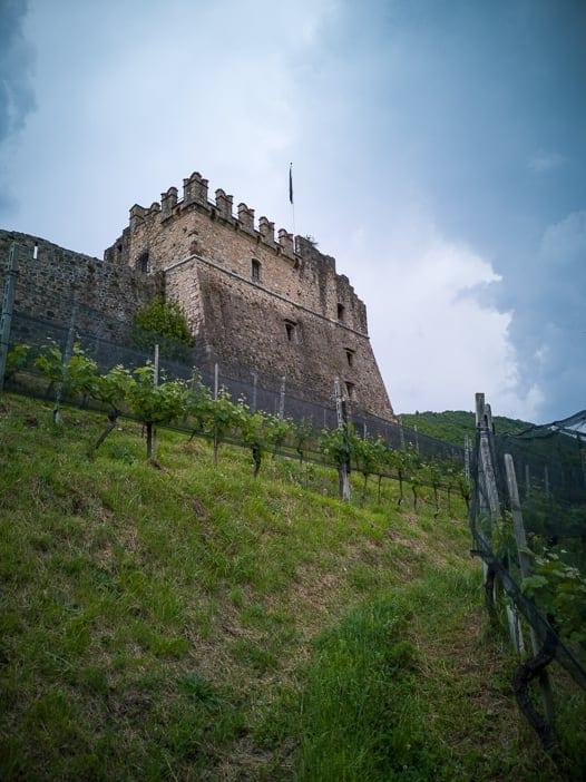 Weinberg Castello di Morcote