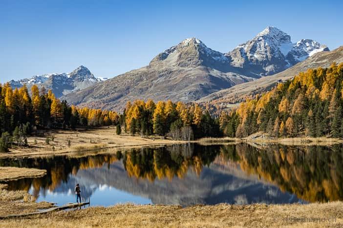 Herbstwanderung Lej da Staz Engadin mit Piz Lagrev, Piz Albana und Piz Julier