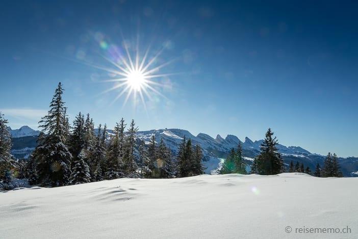 Aussicht von der Alp Fros auf die Churfirsten