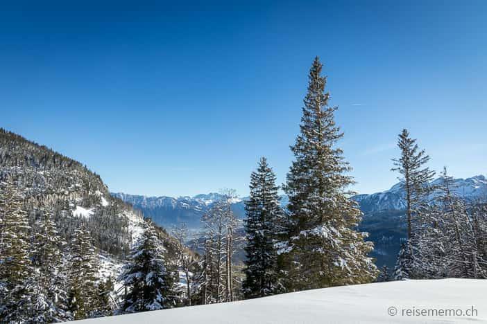 Aussicht von der Alp Fros in Richtung Rheintal