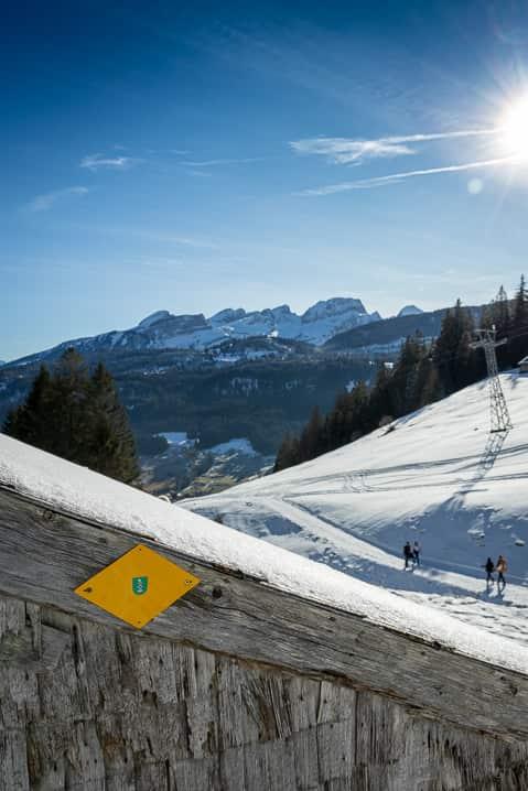 Verschneiter Wanderweg von Wildhaus nach Gamplüt mit Churfirsten