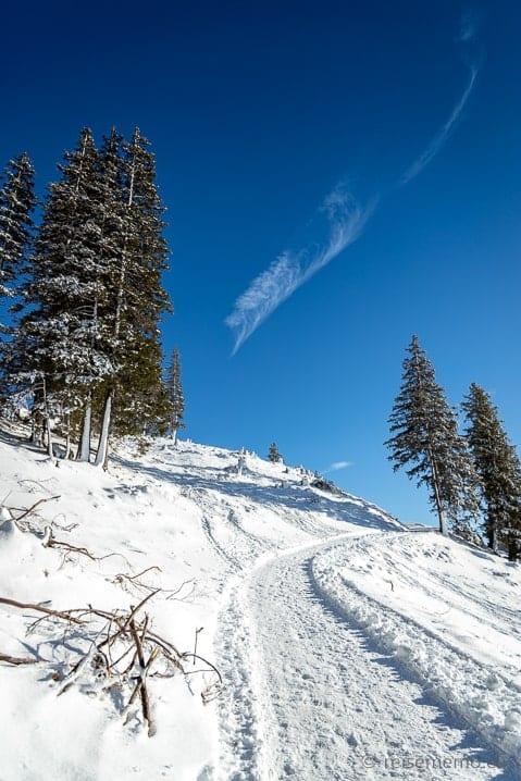 Winterwanderweg von Gamplüt zur Alp Fros