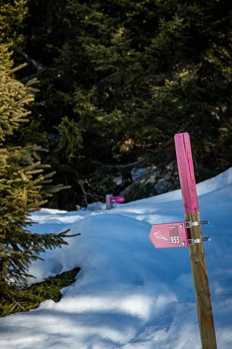 Wegweiser der Schneeschuhwanderung Percorso Carì