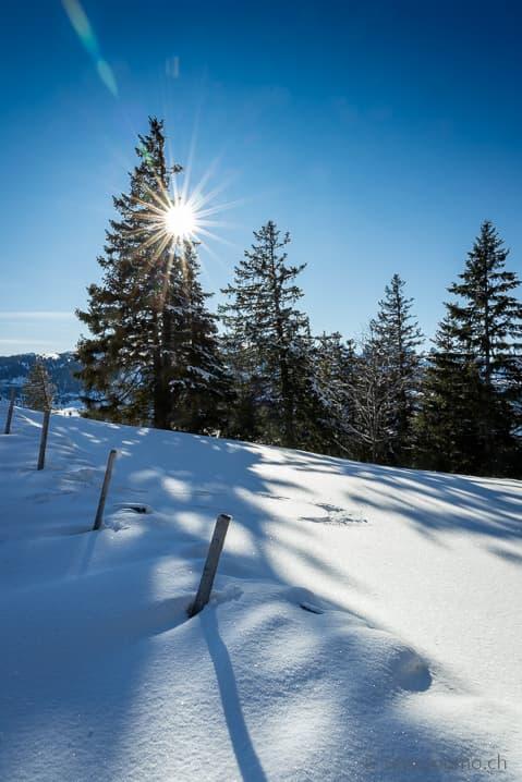 Winterwanderung zur Alp Fros