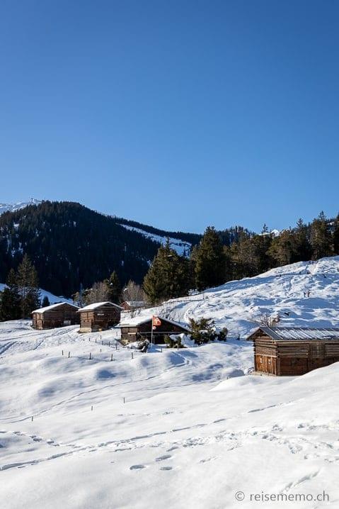 Winterwanderung Flims - Foppa - Runca-Höhe - Flims