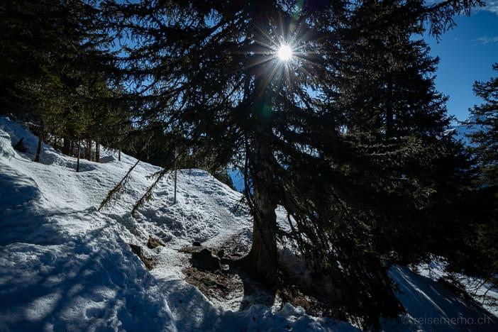 Winterwanderweg Carì