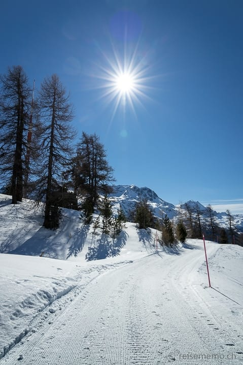 Winterwanderung St.Moritz/Chantarella nach Corviglia