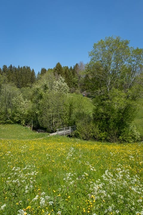 Holzbrücke Chlausenbach