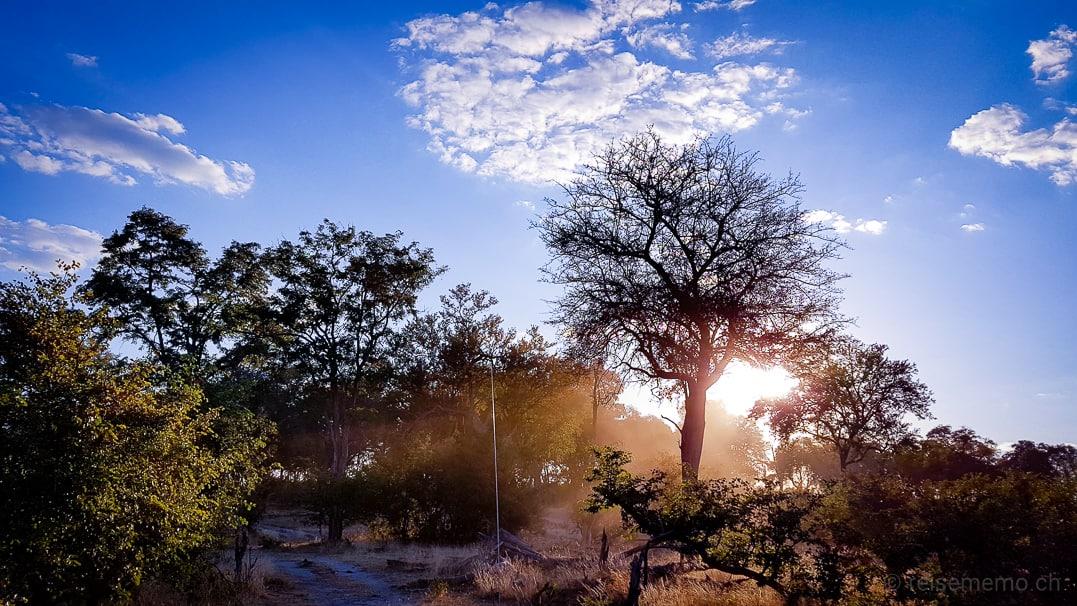 Linyanti Pirschfahrt im Sonnenuntergang